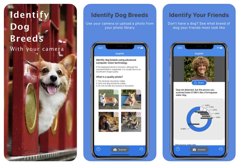 The 10 Best iPhone Apps For Dog Owners In 2020 (Updated)