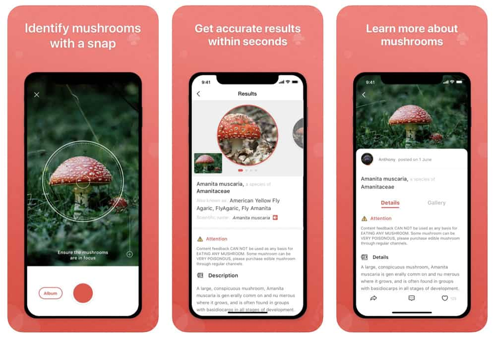 The 10 Best Apps For Identifying Plants – 2020's Cream Of The Crop (Updated)