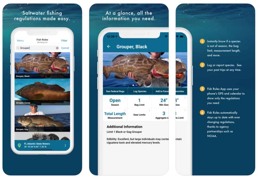 Best iPhone Apps For Fishing