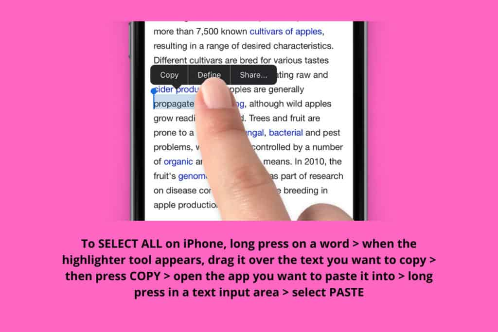 How To Select All on iPhone (The Easy Way)