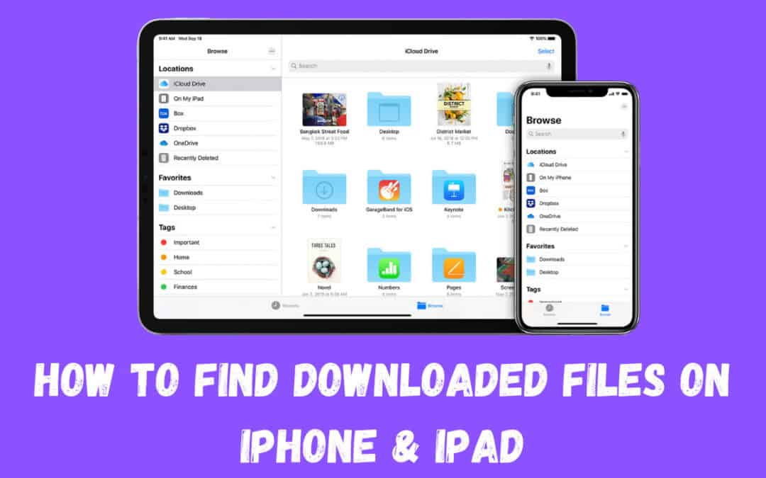 How To Quickly Find Downloaded Files on iPhone